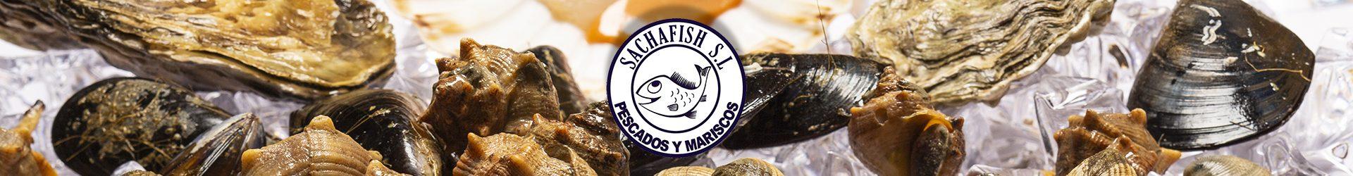 Sachafish Mayoristas de pescado y mariscos en Mercamadrid
